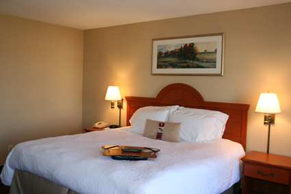 Hampton Inn & Suites Detroit/Sterling Heights Hotel, MI - King Standard